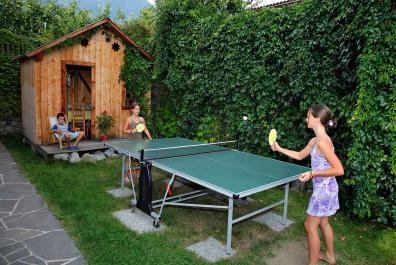 Ping pong table and playhouse