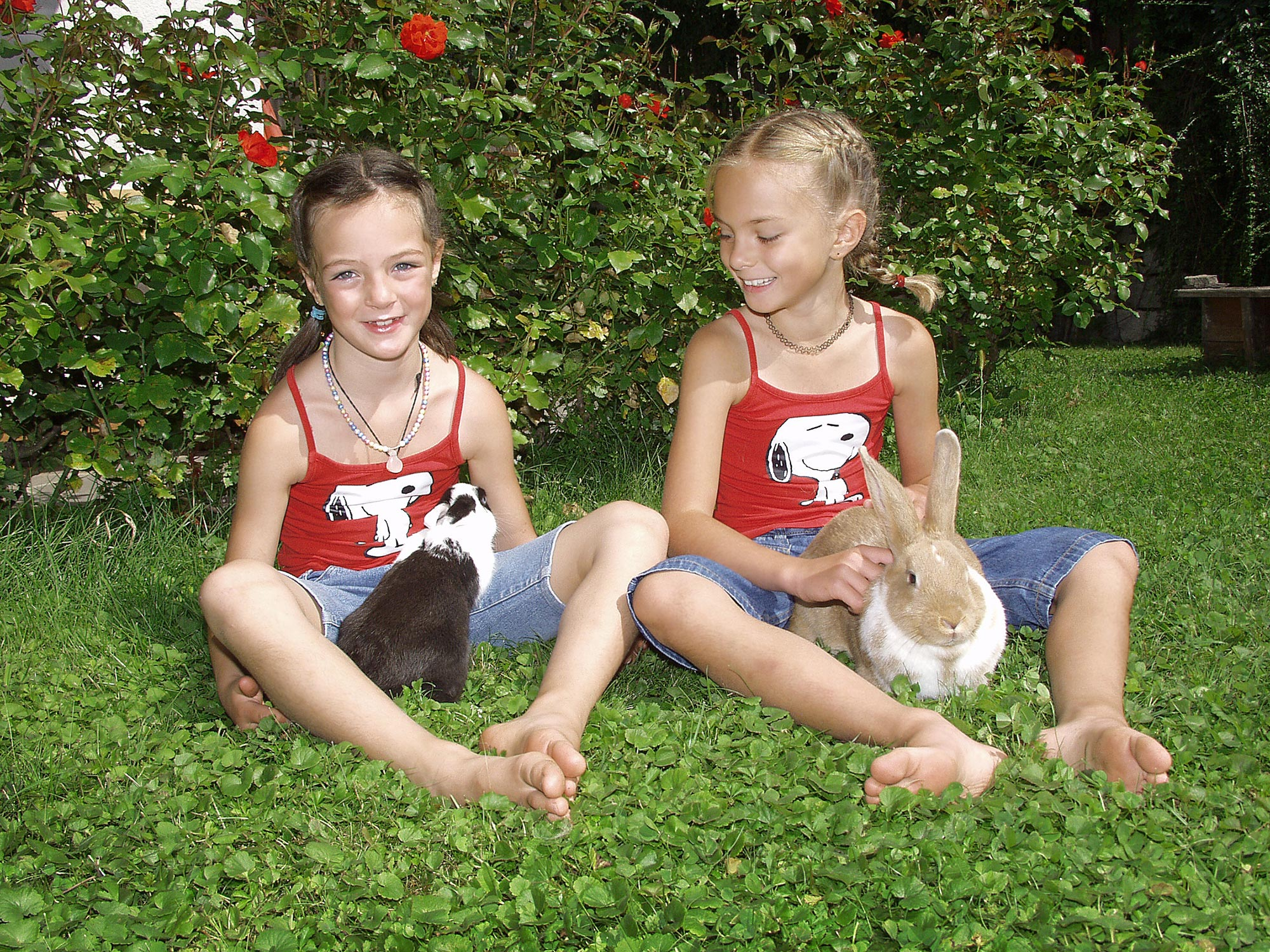 Children playing with rabbits